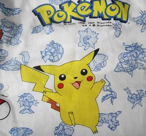 PokemonFabric